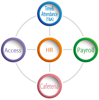 HR Time & Attendance(T&A) Payroll Cafeteria Access